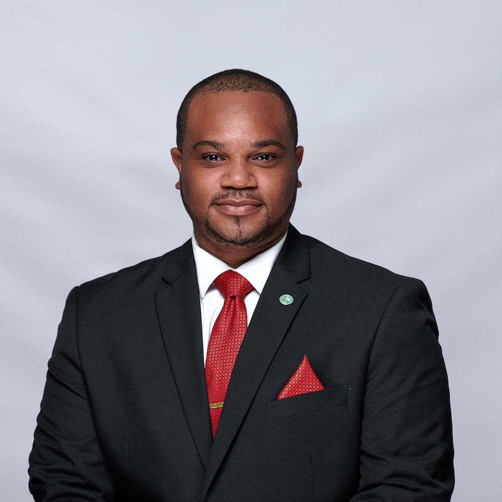 Councillor Kwesi Des Vignes Preview Image